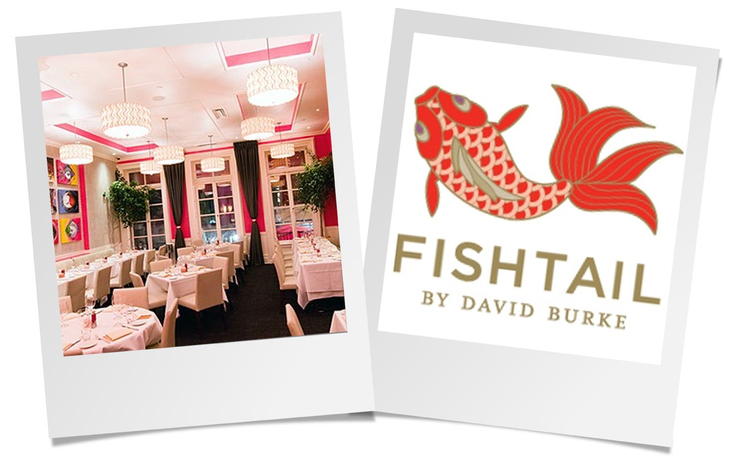 David Burke's Fishtail Rent the Runway