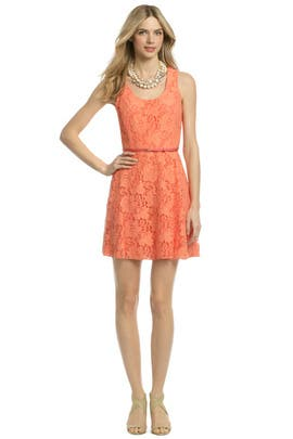 Ali Ro - Sweet Virginia Scoop Dress