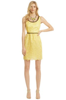 Anna Sui - Daisy Pinwheel Dress