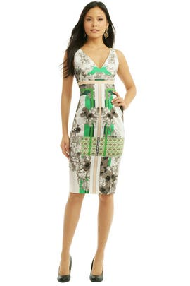 Antonio Berardi - Floral Graphic Inset Sheath