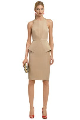 Cushnie Et Ochs - Strike a Pose Sheath