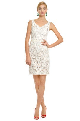 Moschino - So Sweet Lace Sheath
