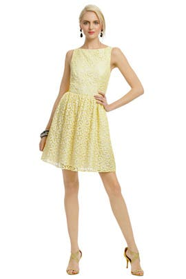 Shoshanna - Oh La La Lace Dress
