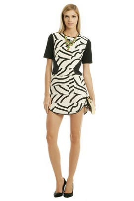 Tibi - Zebra Maze Dress