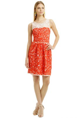 Trina Turk - Summer Lovin Swirl Dress