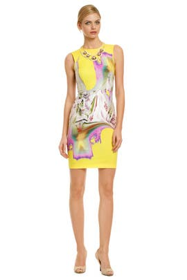 Vera Wang - Melting Floral Sheath
