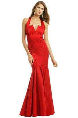 ZAC Zac Posen - Award Winning Gown