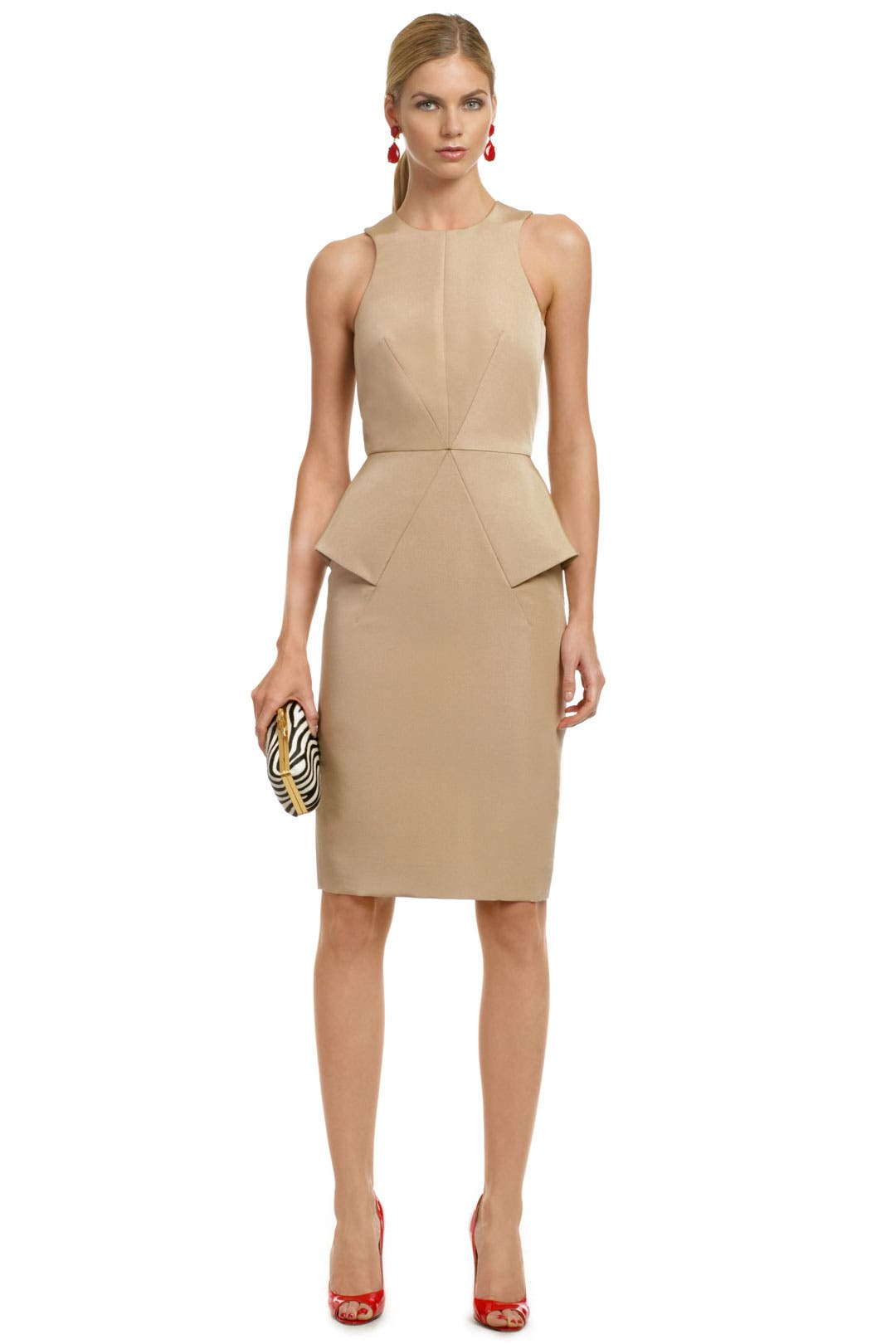 Strike a Pose Sheath by Cushnie Et Ochs