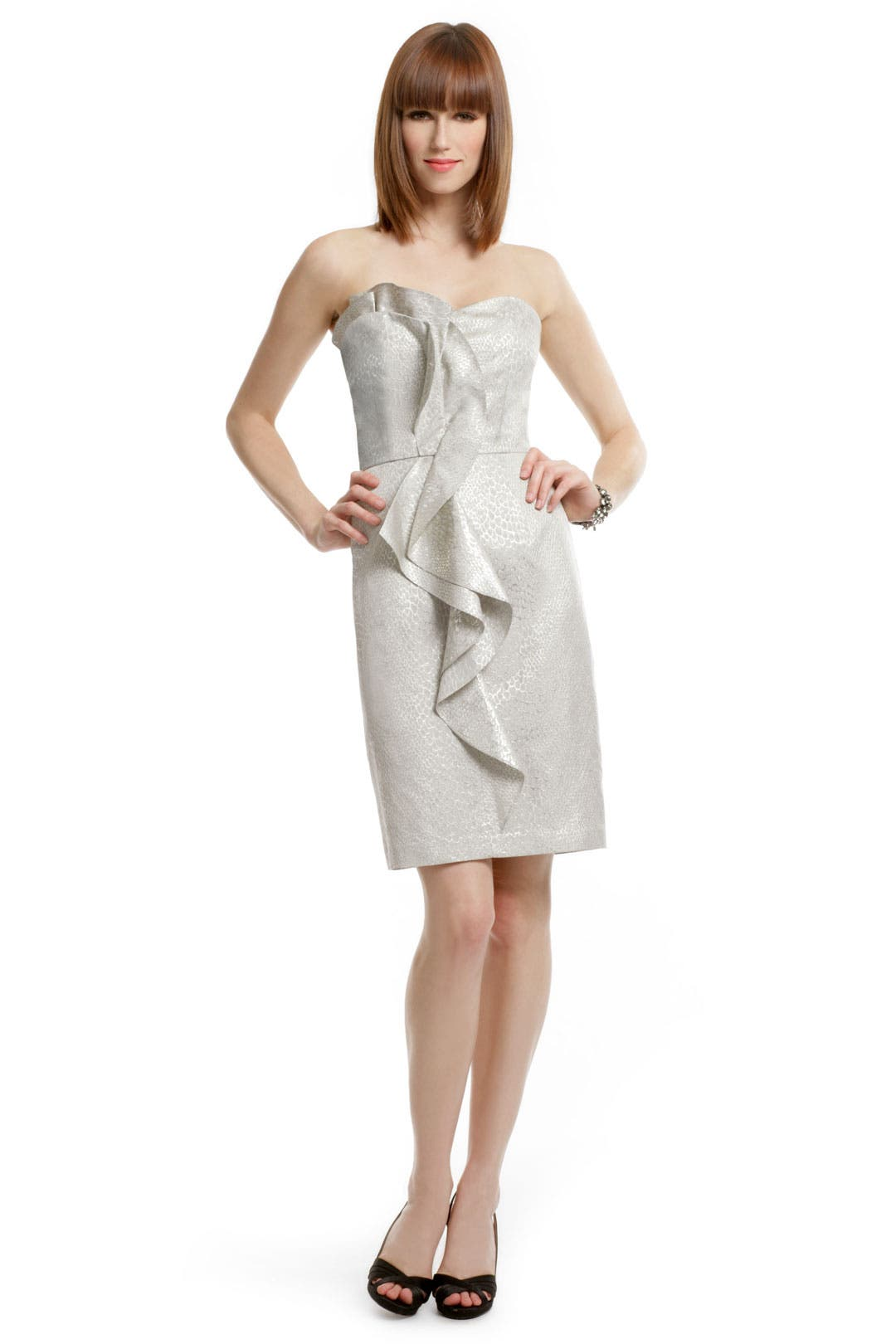 Silvery Sass Dress by David Meister